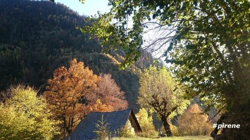 ...naturaleza, otoño por Barradòs....